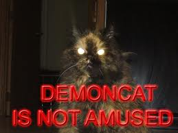demoncat.jpg